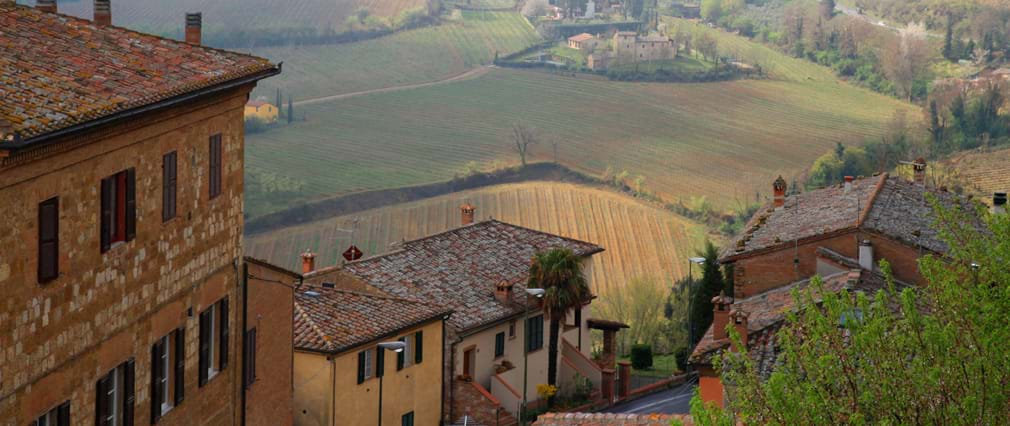 Tuscany from Rome Full Day Trip including Brunello Wine Tasting